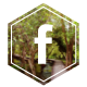 facebook Chambres Souffle Nature